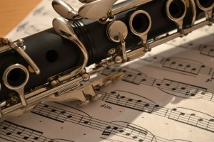 7 Best Clarinet Brands 2018: Buyer's Guide and Reviews