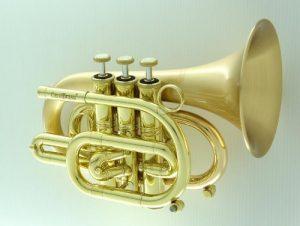 Carol Brass Pocket Trumpet CPT-3000-GLS-SLB