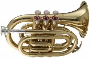 Stagg WS - TR245 Bb Pocket Trumpet